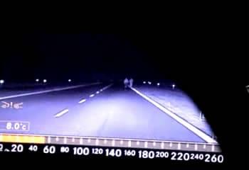 Công nghệ Camera hồng ngoại nhìn đêm của BOSCH tích hợp cho Mercedes-Benz S-Class